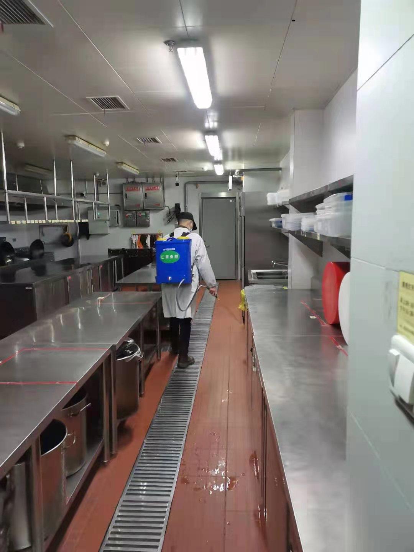 双流灭鼠公司茶林村